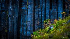 Svartifoss National Park Skaftafell, Iceland, Photographer Vicens Gibert #iceland #islandia #Svartifoss #Skaftafell #vicensgibert