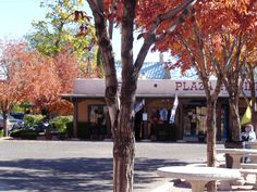 Autumn in Old Town. Albuquerque, New Mexico. October 2013. - Photo by Ronni
