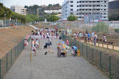 Obstáculos de agility en los parques caninos, ¿beneficio o perjuicio?