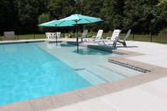Pool with Sun Shelf 8 Natural Swimming Pools, My Pool, Swimming Pools Backyard, Pool Landscaping, Natural Pools, Pool Decks, Gunite Swimming Pool, Lap Swimming, Inground Pool Designs