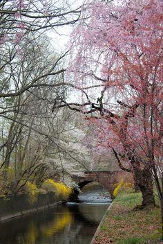 Branchbrrok Park - New Jersey