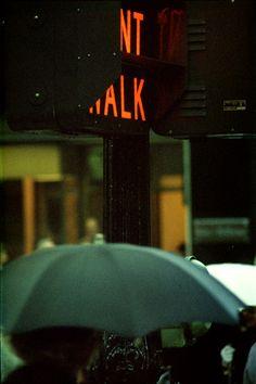 Gallery ギャラリー | 映画『写真家ソール・ライター 急がない人生で見つけた13のこと』公式サイト