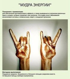 Svetlana Anlas: