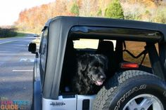 5 DIY Jeep Wrangler Rear Window Tips Every Jeeper Should Know | The Fun Times Guide to Jeeping