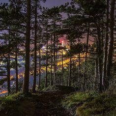 Mystisch... #Jena #jenaparadies #inthewoods  #nachtwanderung #night #keksrolle #canonphotography #goodnight