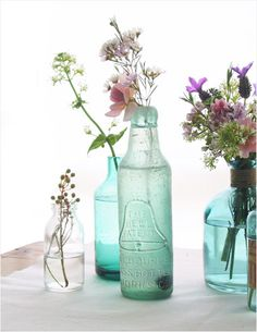 Vintage Bottles as Flower Vases