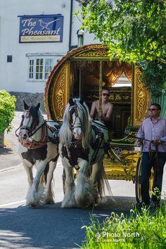 Gypsy Trailer, Gypsy Caravan, Gypsy Wagon, Cumbria, Gypsy Horse, Horse Tack, Bareback Riding, Horse Drawn Wagon, Gypsy Life