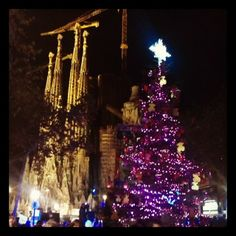 Christmas tree at Sagrada Familia, Barcelona