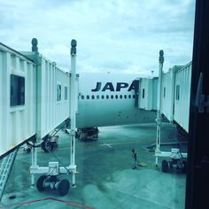 Y-class JAL914 OKA -> HND in 201602 #jal #travel #air #sky