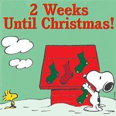 2 weeks until Christmas