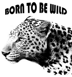 Leopard portrait print T-Shirt. Wear this T-Shirt which reflects confidence, pride of the wild. Nature Prints, First Love, Confidence, Pride, Wildlife, Portrait, T Shirt, Supreme T Shirt, Tee Shirt