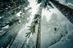 """ski-blog: """"  Photo by Reuben Krabbe. """""""