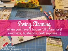 Pet parents, grab your must-have spring cleaning checklists here! Tips for daily, weekly, monthly, and quarterly cleaning. just in time to tackle your spring clean. Weekly Cleaning Checklist, Clean My House, Love People, Animals For Kids, Happy Planner, Pet Care, Your Pet, Free Printables, Craft Supplies