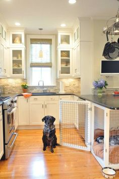 These 26 Small Kitchen Design Ideas Will Give You Major Home Inspo I love how the dog crate is incorporated into the kitchen design! My dog's comfort when he hangs out in the kitchen with me is of high importance (Because he's spoiled). Dog Rooms, Dog Houses, My New Room, My Dream Home, Sweet Home, New Homes, House Ideas, Indoor, House Design