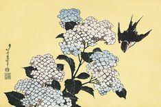 紫陽花に燕 葛飾北斎 北斎花鳥画集