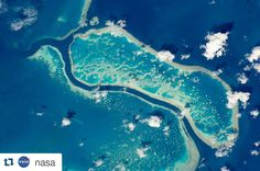 #Repost @nasa with @repostapp  The Great Barrier Reef is the largest reef system on Earth with more than 3000 separate reefs and coral cays. It is also one of the most complex natural ecosystems with 600 types of corals and thousands of animal species from tiny planktons to whales. Corals look like plants but are in fact colonies of very small animals known as coral polypsclosely related to jellyfish. The color differences in the photo relate to different habitats for coral growth; that is…