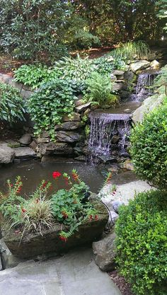Natural rock garden landscape featuring gentle waterfalls.