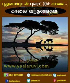 www.yaalaruvi.com
