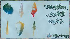 Watercolour Seashell Brushes