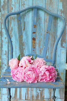 A cute roughed up old chair will a small potted plant would look so nice in the yard.