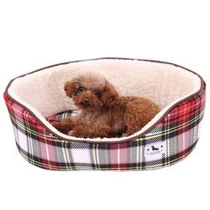New cheap pet gift uploaded at SketchGrowl: Soft Plush Dog Bed Cheap Dog Beds, Cheap Pets, Puppy Beds, Pet Beds, Large Dogs, Small Dogs, Plush Dog Bed, Dog House Bed, Dog Rates
