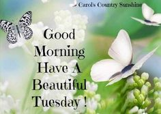 Good morning via Carol's Country Sunshine on Facebook
