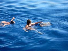 kupanjeskornjacom - sea turtle whisperers