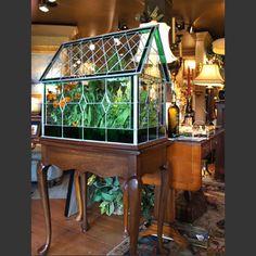 plants Glass Room, Terrarium, Plants, Home Decor, Terrariums, Decoration Home, Room Decor, Plant, Home Interior Design