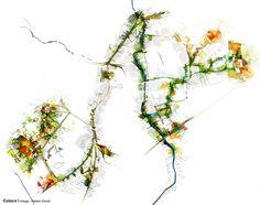 Coloco | Paysagistes / Urbanistes / Jardiniers | Les délaissés en réseau