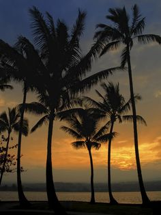 ✯ Mauna Loa Sunset - Big Island Hawaii