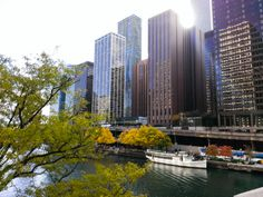 Sunny Chicago. by Luis Carvalho on 500px