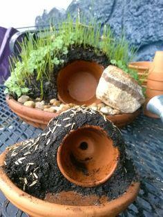 Gerbil Cages, Hamster Habitat, Baby Hamster, Cute Guinea Pigs, Indoor Garden, Container Gardening, Habitats, Hamster Ideas, Hamsters