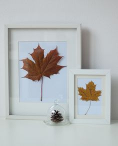 Simplicity at it's finest...Three Easy Ideas for Autumn Decoration ♥ Три лесни идеи за есенна декорация | 79 Ideas