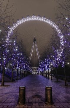 London Eye is a beautiful places , I have maybe 100 for eye London . I think this picture in the new years . Also I like it the blue light .