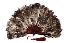 Range of ostrich feathers, France, around 1890-1900, turtle, ostrich feathers, silk, Antique Fans, Ostrich Feathers, Turtle, Antiques, Palazzo, Range, Antiquities, Turtles, Antique