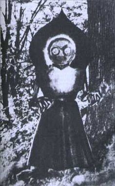 It is claimed that the Flatwoods Monster is some form of extraterrestrial, as this creature was spotted in the vicinity of a large UFO that either hovered above or rested on the ground in the town of Flatwoods, in Braxton County, West Virginia, on September 12, 1952. According to the reports, this creature was huge, at least 10 feet tall. its face gave off a reddish glow, and its body was green in colour. Its head was shaped like a heart or Ace of Spades, and out of this strangely shaped head bu
