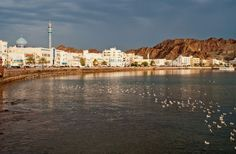 Old Mutrah #Muscat #Oman…