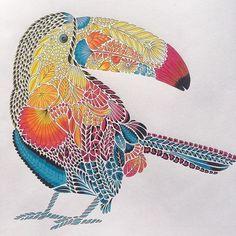 #milliemarottatropicalwonderland #milliemarotta #derwentpencils #fabercastell #coloring #milliemarottabooks
