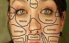 La medicina tradicional china nos enseña que todas las áreas de nuestra cara se relacionan con determinados órganos de nuestro cuerpo, y nuestro rostro