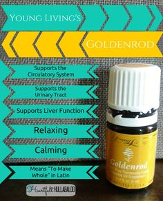 #Goldenrod.  Who knew?  HelpMeOil.com