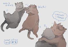 Haikyuu!! Oikawa Tooru, Iwaizumi Hajime, cats