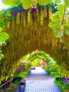 Bayview Farm & Garden, Whidbey Island, USA  Google+