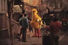 """vintagesesame: """" Big Bird and the cast shooting the first season of Sesame Street. Jim Henson Puppets, Rockin Robin, I Will Remember You, Childhood Tv Shows, Fraggle Rock, The Wiggles, The Dark Crystal, Big Bird, Pictures Of People"""