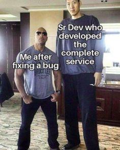 Programmer Humor, Funny Memes, Jokes, Programming, Bugs, Thinking Of You, Coding, Graphic Sweatshirt, Entertainment