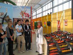 Tomatoworld is een informatie- en educatiecentrum over de Nederlandse Glastuinbouw en opgericht door Greenco.  Bezoekers maken speels kennis met onderwerpen zoals smaak, teelt, technische innovaties en consumentengedrag.