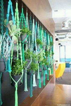 Decor with hanging plants.jpg
