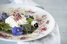 cottage cheese with eatable blossoms, sprouts and fresh salad photo by ckahr.com #foodphotography Cottage Cheese, Blossoms, Sprouts, Food Photography, Salad, Fresh, Tableware, Foods, Kochen