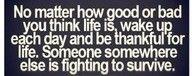 True<3 True<3 True<3