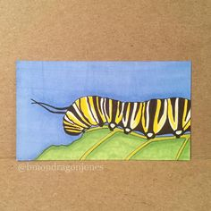 Monarch Butterfly Caterpillar #illustration #monarch #butterfly #tinycanvas…