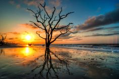 13. Botany Bay Wildlife Management Area on Edisto Island, SC.